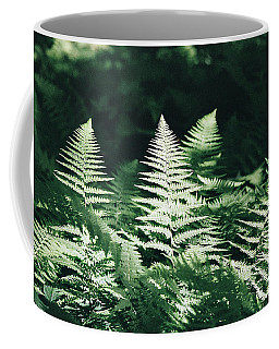 Coffee Mug featuring the photograph Sunlight And Shadows-algonquin Ferns by David Porteus