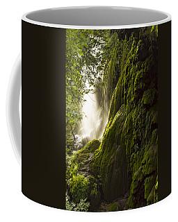 Gorman Falls Ray Of Light Coffee Mug