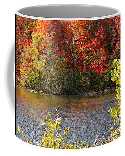 Sunlit Autumn Coffee Mug by Ann Horn