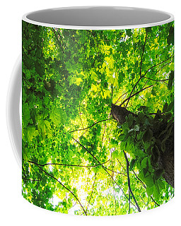 Coffee Mug featuring the photograph Sunlit Leaves by Lars Lentz