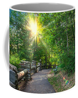 Sunlit Path Coffee Mug