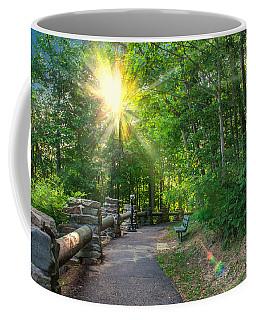 Sunlit Path Coffee Mug by Mary Almond