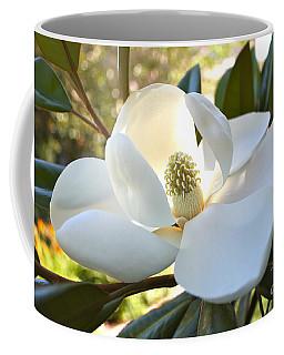 Sunlit Southern Magnolia Coffee Mug