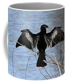 Sunning Anhinga Coffee Mug