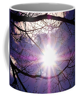 Coffee Mug featuring the photograph Sunny Afternoon by Sherman Perry