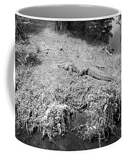 Coffee Mug featuring the photograph Sunny Gator Black And White by Joseph Baril