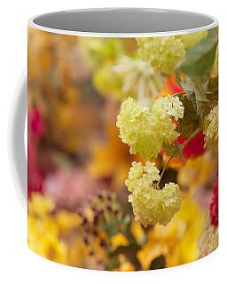 Sunny Mood. Amsterdam Flower Market Coffee Mug