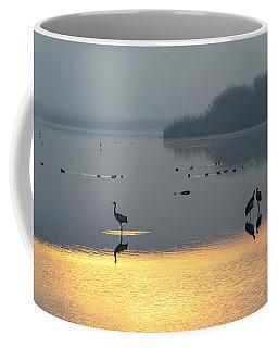 Sunrise Over The Hula Valley Israel 1 Coffee Mug