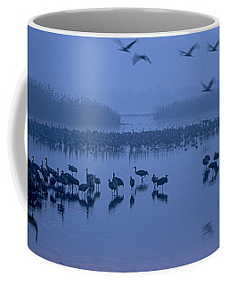 Sunrise Over The Hula Valley Israel 4 Coffee Mug