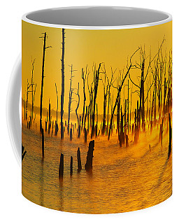 Sunrise Fog Shadows Coffee Mug