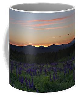Sunrise Over A Field Of Lupines Coffee Mug