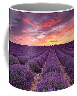 Sunrise Over Lavender Coffee Mug