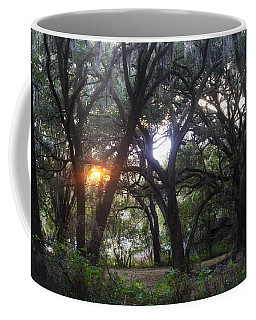 Sunrise Through The Oaks Coffee Mug