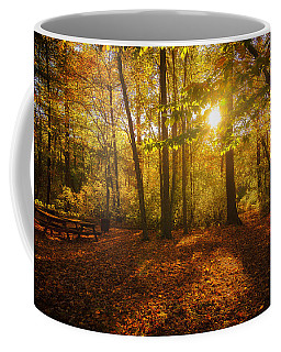 Sunset Forest Coffee Mug