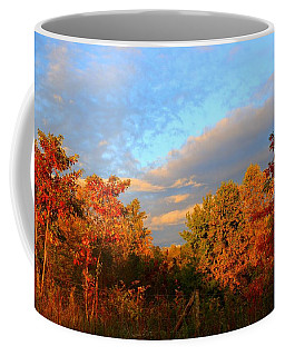 Coffee Mug featuring the photograph Sunset Glow by Kathryn Meyer