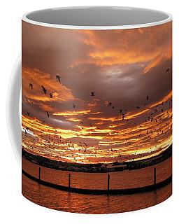 Sunset In Tauranga New Zealand Coffee Mug