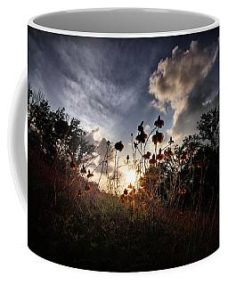 Sunset On Daisy Coffee Mug