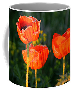 Coffee Mug featuring the photograph Sunset Poppies by Debbie Oppermann