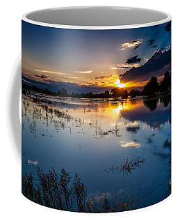 Coffee Mug featuring the photograph Sunset Reflections by Steven Reed