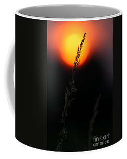 Sunset Seed Silhouette Coffee Mug