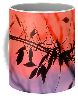 Sunset Serenade Coffee Mug by Tracy Male
