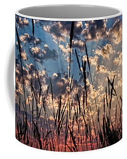 Coffee Mug featuring the photograph Sunset Through The Grasses by Don Schwartz