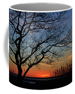 Sunset Tree In Ocean City Md Coffee Mug