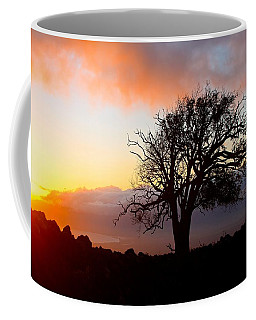 Sunset Tree In Maui Coffee Mug by Venetia Featherstone-Witty