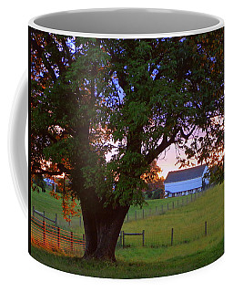 Sunset With Tree Coffee Mug