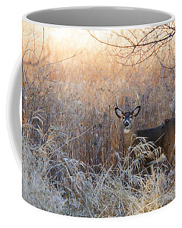 Sunshine Deer Coffee Mug