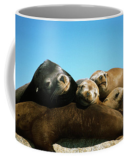 Surface Level View Of California Sea Coffee Mug