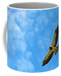 Swainson's Hawk Snake River Birds Of Prey Natural Conservation Area Coffee Mug