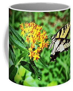 Swallow Tail Butterfly Coffee Mug