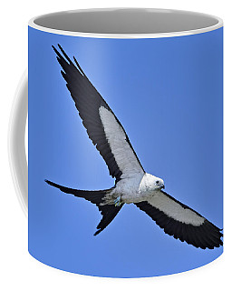 Swallow-tailed Kite Coffee Mug