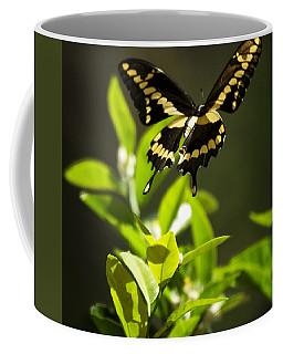Swallowtail Butterfly In Flight  Coffee Mug