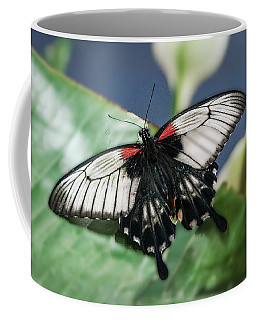 Coffee Mug featuring the digital art Swallowtail Butterfly by Mae Wertz