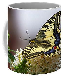 Coffee Mug featuring the photograph Swallowtail Butterfly by Nick  Biemans