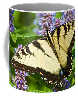 Swallowtail Butterfly On Anise Hyssop Coffee Mug