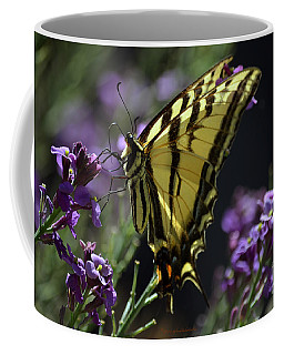 Swallowtail Butterfly On Lavender  Coffee Mug