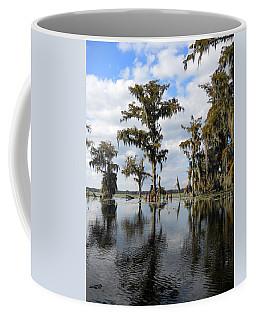 Swamp Coffee Mug by Beth Vincent