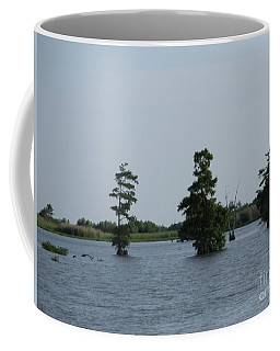 Coffee Mug featuring the photograph Swamp Tall Cypress Trees  by Joseph Baril
