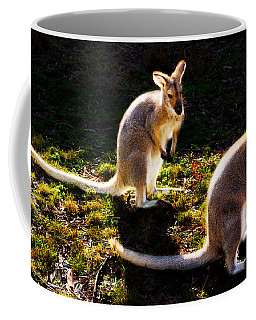 Swamp Wallabies Coffee Mug by Miroslava Jurcik