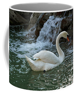Swan A Swimming Coffee Mug