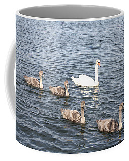 Coffee Mug featuring the photograph Swan And His Ducklings by John Telfer