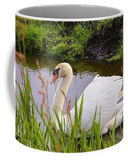 Swan In Water In Autumn Coffee Mug