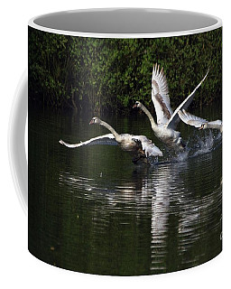 Swan Take-off Coffee Mug