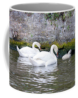 Swans And Cygnets In Brugge Canal Belgium Coffee Mug