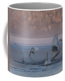 Coffee Mug featuring the photograph Swans Chasing by Patti Deters