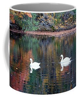 Coffee Mug featuring the photograph Swans by Karen Silvestri