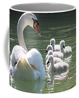 Coffee Mug featuring the photograph Swans  by Rogerio Mariani